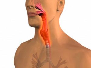 immagini in 3D della gola